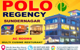 Graphic Design – Polo Regency, Sundernagar, Mandi HP